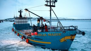 Online Premiere: vulture: Where to Watch Deadliest Catch Season 16 Episode 16 Online?